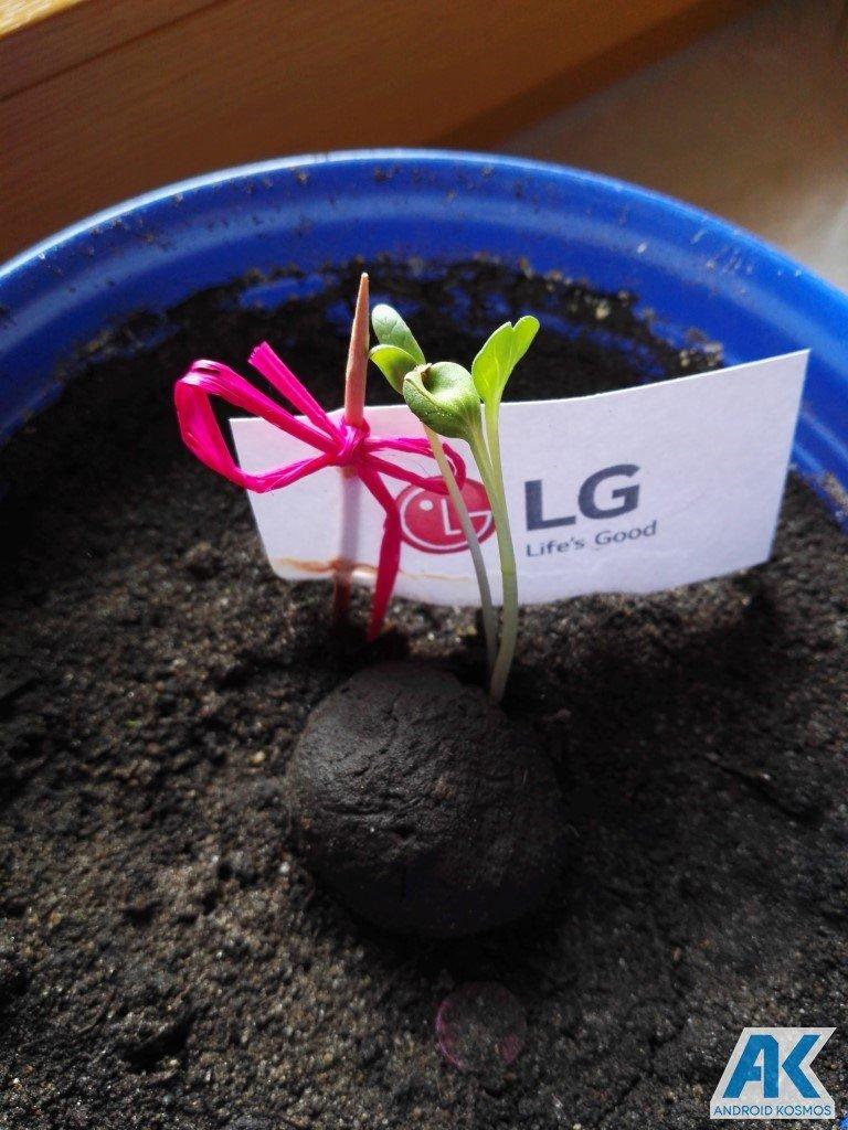 """LG """"Life's Good"""" engagiert sich für den Umweltschutz und wir pflanzen die Saat 16"""