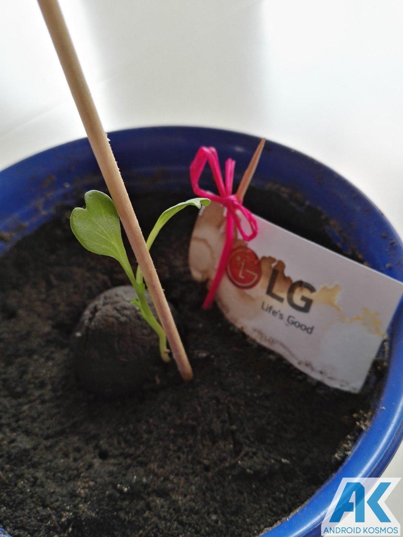 """LG """"Life's Good"""" engagiert sich für den Umweltschutz und wir pflanzen die Saat 19"""