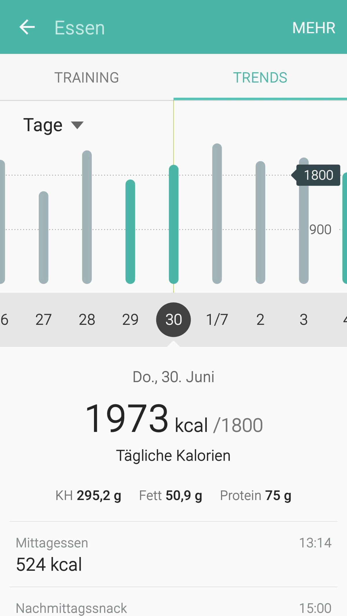 Berühmt Mahlzeit Tracker Vorlage Bilder - Entry Level Resume ...