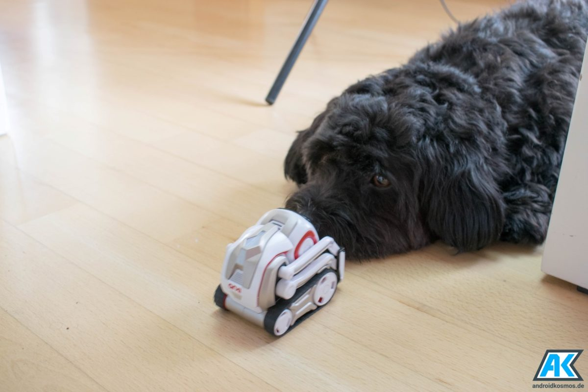 Anki Cozmo Test: Der knuffige Spielzeugroboter mit eigener KI 59