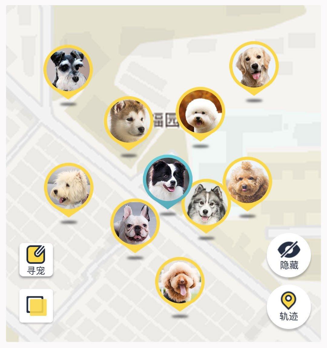 Mi Pet Tracker 11