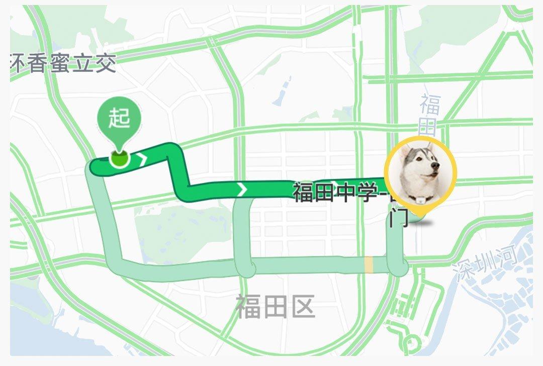 Mi Pet Tracker 6