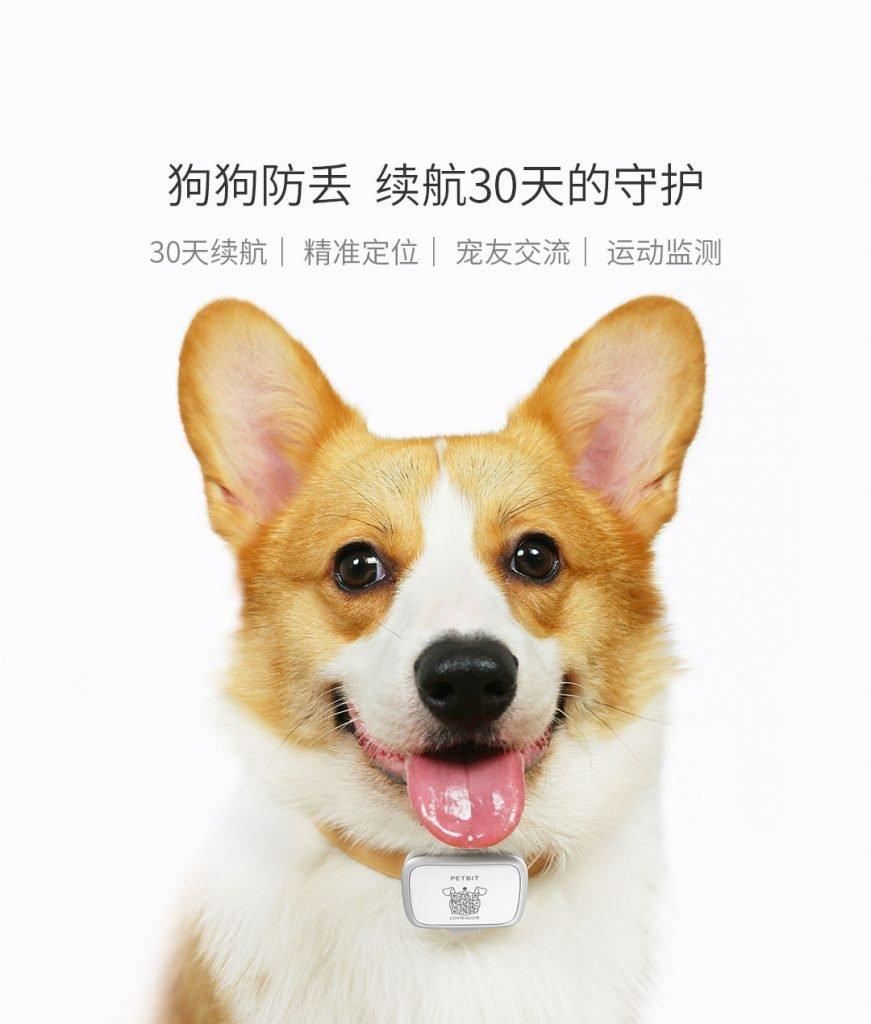 Mi Pet Tracker Dog3 871x1024